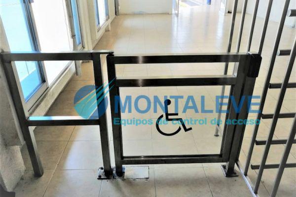puerta-para-discapacitados-doble-peines-bidi-ace-inox-tabDEA1D5DF-2934-81E0-E7E3-40A19E40FB5D.jpg